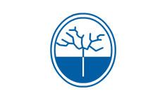 Página web Clínica Albizia
